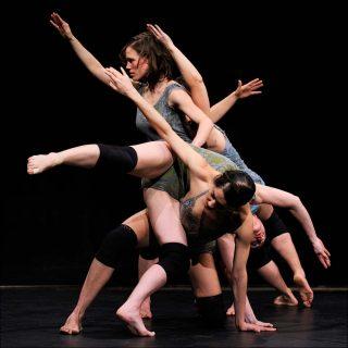 Gris, danse contemporaine, Myriam Gourfink