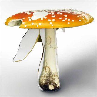 iant Triple Mushroom Amanita muscaria, Carsten Hölle
