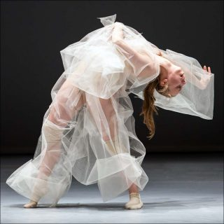Soft Virtuosity, Danse contemporaine, Marie Chouinard