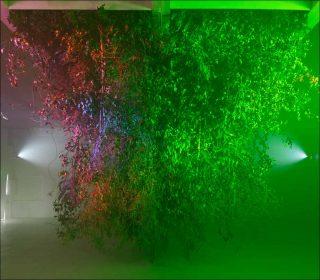 Vocoder & Camouflage, installation, Jonathan Uliel Saldanha