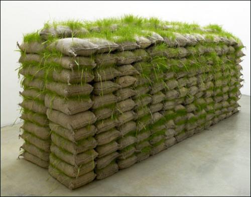 Mona Hatoum, Jardin suspendu, 2008. Sacs de terre, graines, herbe.