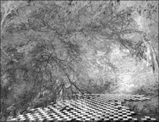 lukas hoffmann juliette mogenet claire trotignon variations sur horizons paris art. Black Bedroom Furniture Sets. Home Design Ideas