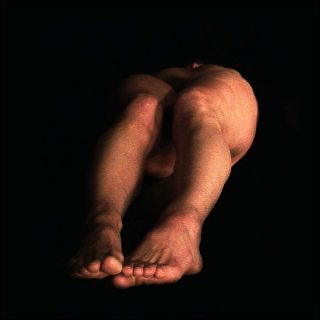 Laurent Goldring, vidéo