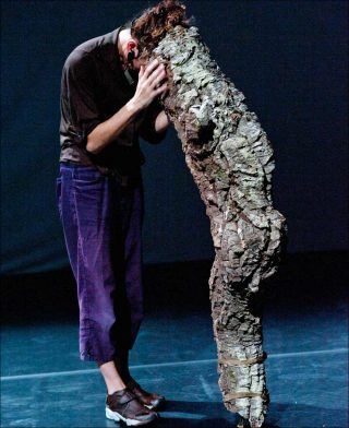Les Serrenhos du Caldeirão, Danse contemporaine, Vera Mantero