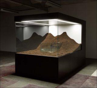 Sans titre (couple d'axolotls), diorama, Mathieu Mercier