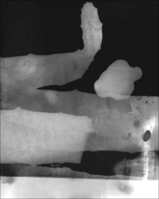 Test Strips, photogramme, Vincent Ceraudo