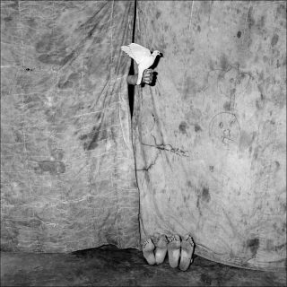 Juxtaposed, photo, Roger Ballen