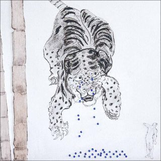 les larmes d'un tigre indien, dessin, Pierre Desfons