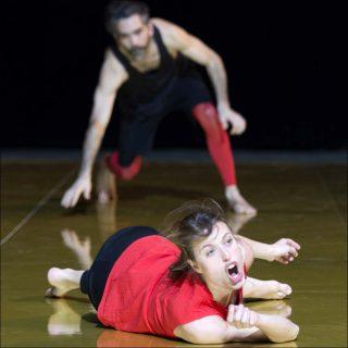 Combat de Carnaval et Carême, danse contemporaine, Olivia Grandville