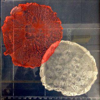 Test de cristallisation du menthol et de l'héliotropine, installation, Julie C. Fortier