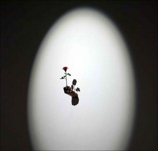 Tout mon amour, sculpture, Samuel Rousseau