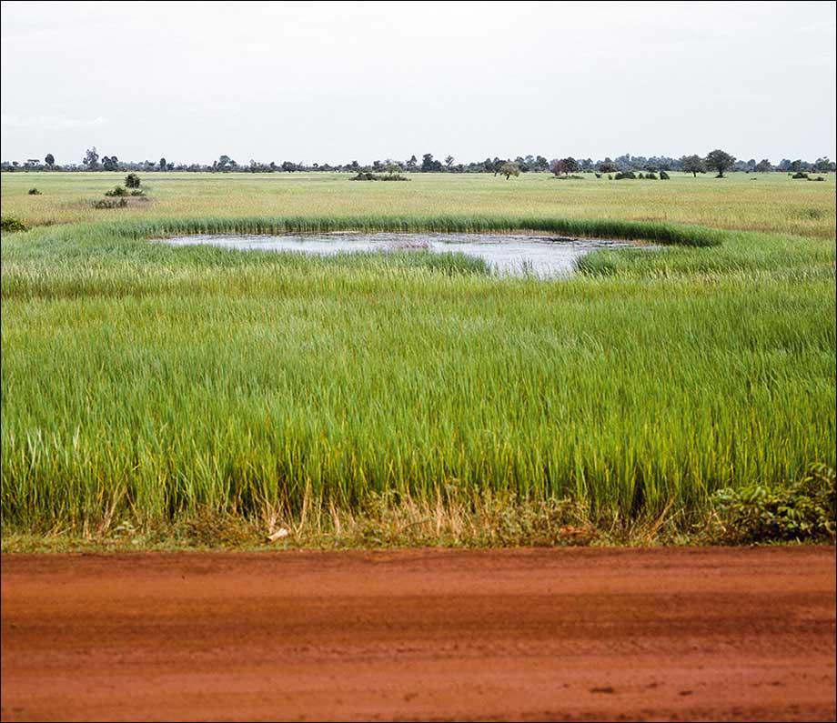 Série Bomb Ponds, photo, Vandy Rattana