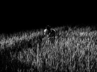 Alex Majoli, Scene #2233, Inde, 2015.