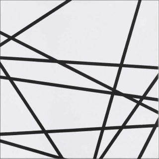 Bertrand Lavier, 10 lignes au hasard peint par Lavier, 1975.
